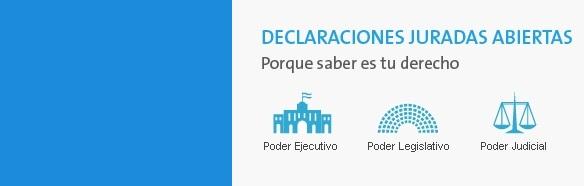 ACIJ lanzó el primer sitio de Declaraciones Juradas abiertas