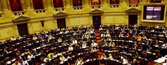 ONGs presentaron un amparo a la Cámara de Diputados de la Nación y otro al Senado