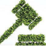 Acceso a la Justicia Ambiental